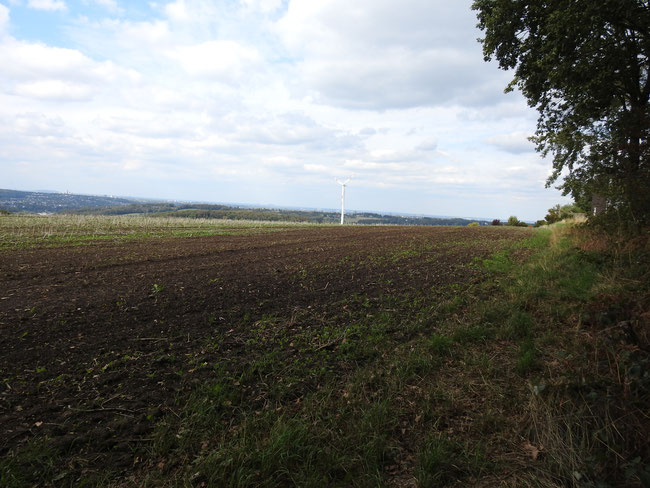 ... Blickrichtung Nordwest - Nord Zoom 24 mm ...