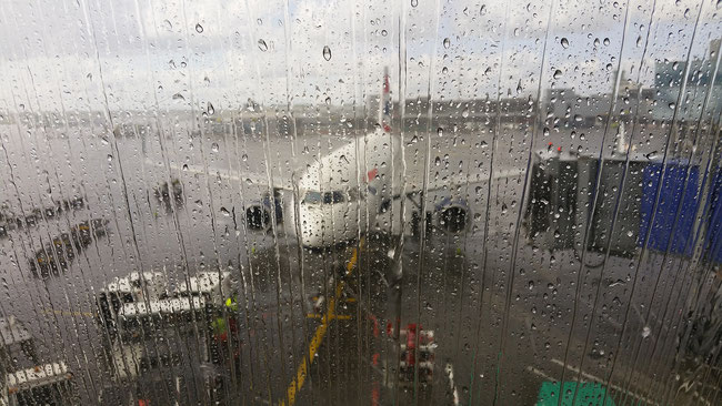 Wenn es regnet, weint der Himmel: Kind am Flughafen - WC zur Welt gebracht und entsorgt