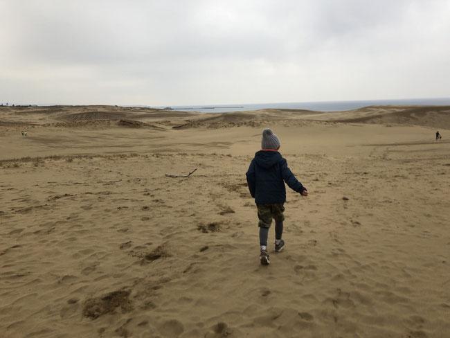 鳥取 鳥取砂丘
