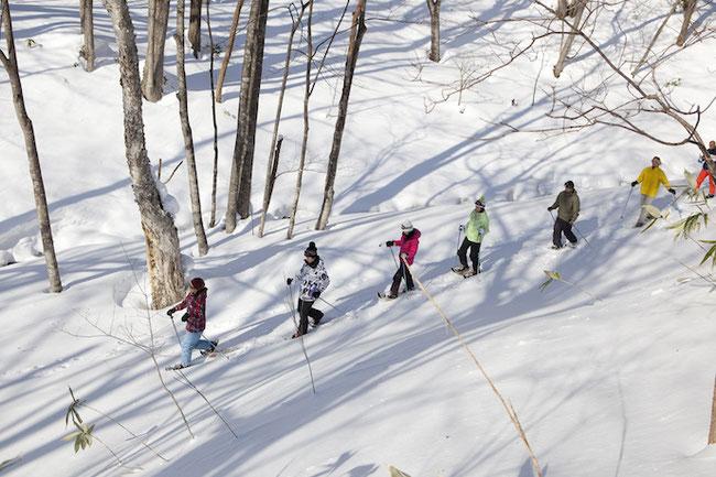クラブメッド クラブメッド北海道サホロ スキー トレッキング