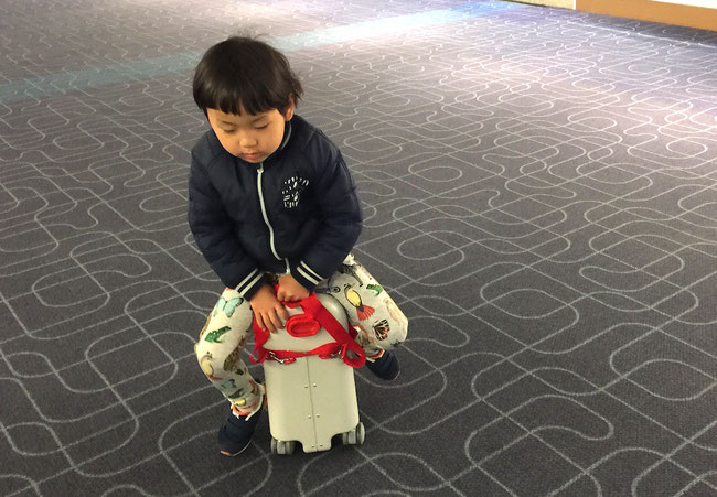 BED BOX JET KIDS ジェットキッズ ベッドボックス 子ども スーツケース