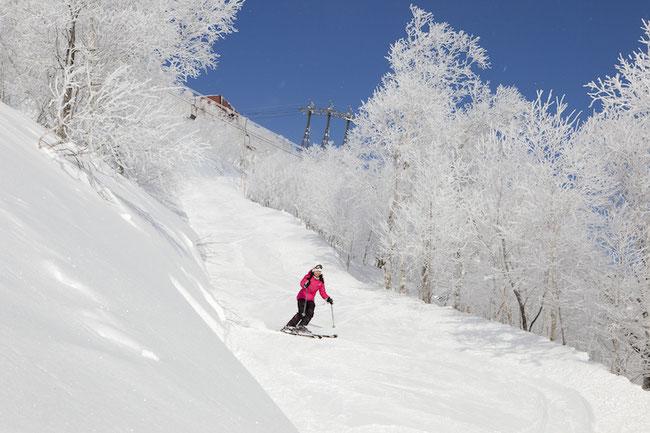 クラブメッド クラブメッド北海道サホロ スキー