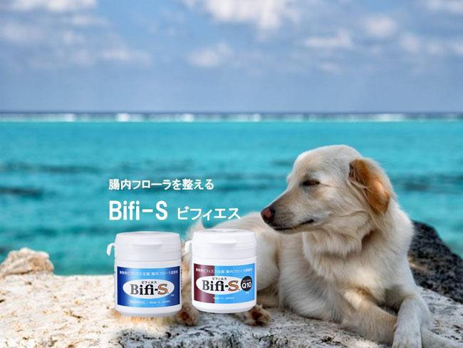腸内フローラを整えるBifi-S ビフィエス