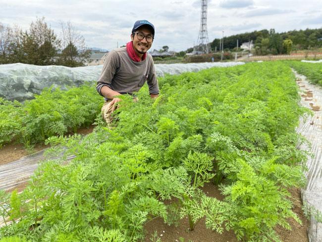人参の畑の前で、柿田さんへ取材