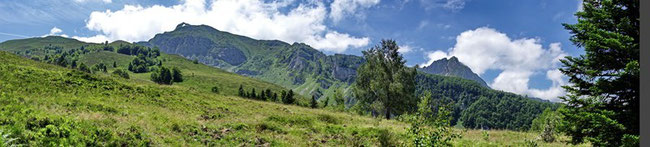 Des espaces naturels préservés