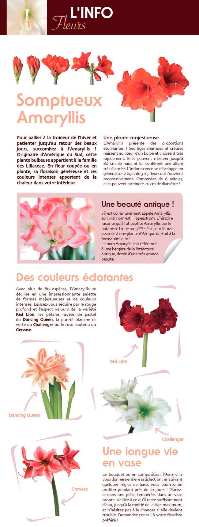 Fete Des Meres A L Heure Du The Mon Fleuriste Prefere La