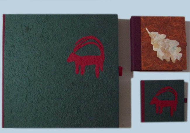 caja regalo, carpeta regalo, pappel veneciano, papel de guarda, papel de aguas, marmorizado, regalo institucional, ecología, parque natural, botanica