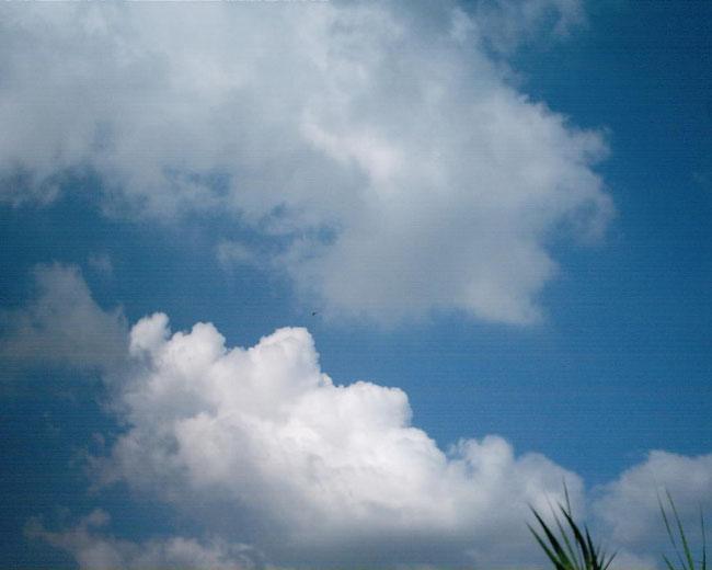 من أعلى – حيث يكون المؤمن – فإنه يرى العالم بوضوح أكثر. تصوير: عادل غنيم 09.09.2014