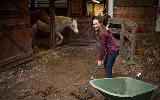 Auspannen beim Ausmisten: Eva Lechner mit ihren Pferden und der Freude auf die neue Saison © Armin Huber