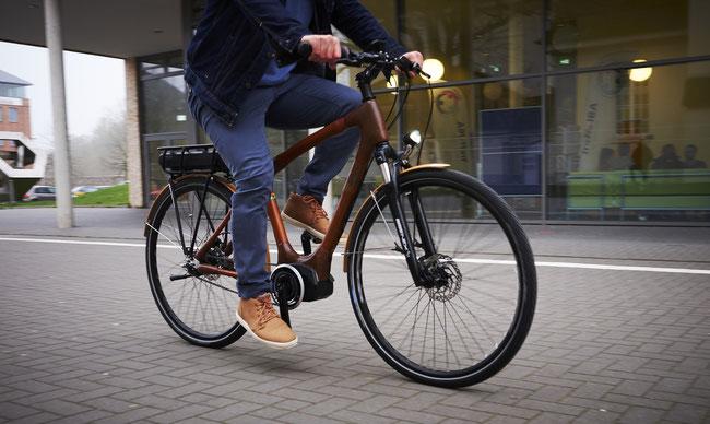 Das erste E-Bike aus Bambus der Welt, my  Volta!