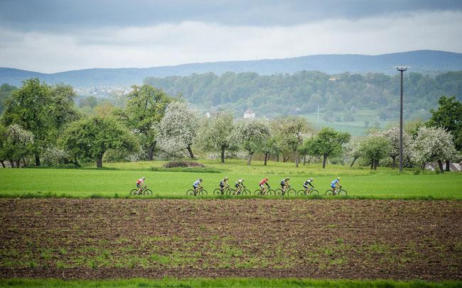 Beim Rothaus Hegau Bike-Marathon werden wieder die Europameister ermittelt ©Marius Maasewerd/EGO-Promotion