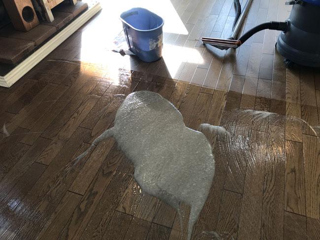 フローリング洗浄作業中
