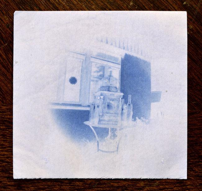 Das Cyanotype-Negativ vergrössert