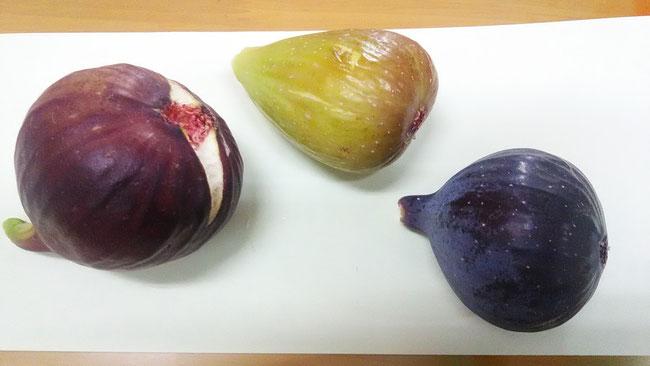桝井ドーフィン(左)、蓬莱柿(中)、ビオレ・ソリエス(右)