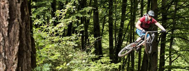 h.nef-teufen-appenzellerland-reparatur-service-verkauf-händler-werkstatt-zertifiziert-region-ostschweiz-Fachwerkstatt-velo-merida-ebike-sport-centurion-bike-velo-bosch-shimano-steps