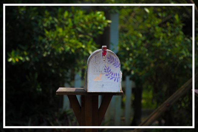 une boîte à lettre  peintz en gros plan des arbres en arrière plan