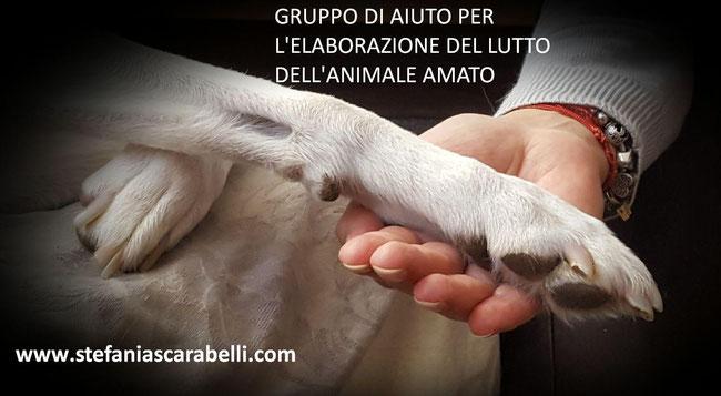 Counselling per l'elaborazione del lutto del proprio animale