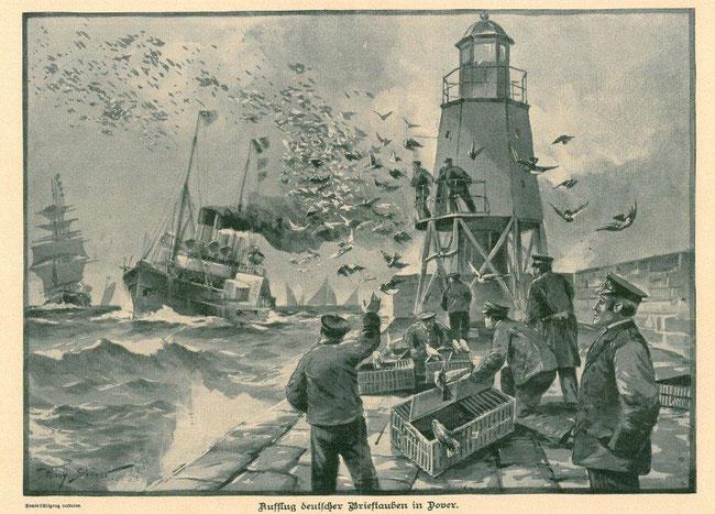 Auflass deutscher Brieftauben in Dover