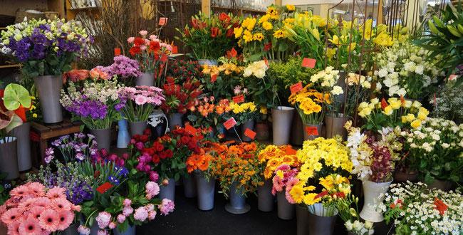 Ihr Blumenfachgeschäft Blumen Rieger In Hof Bei Salzburg Und Faistenau