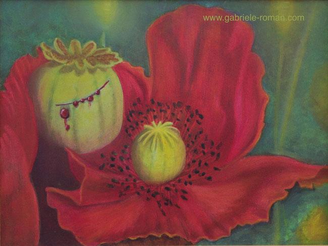 Rote Mohnblume, aus der angeschnittenen Mohnkapsel tritt Blut aus.