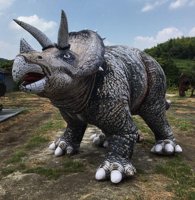 ★全長5m 「トリケラトプス」