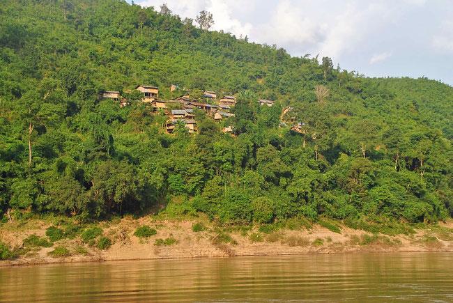 Dichter Dschungel und kleine Dörfer