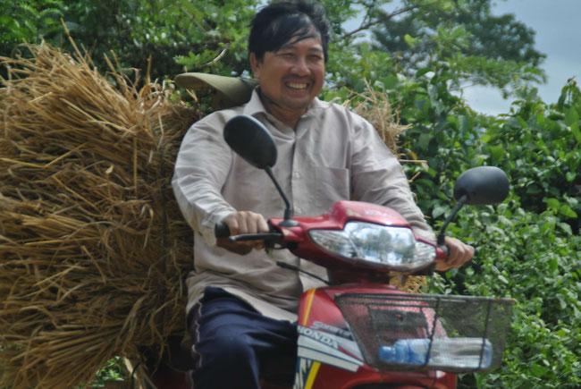 Moped, Motorrad, Stroh