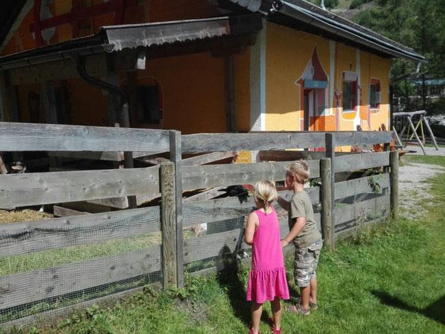 Spielplatz und Streichelzoo Mühlbach am Hochkönig