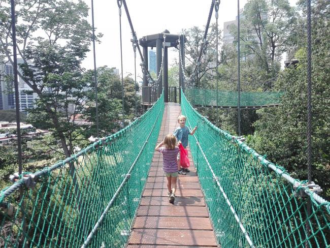 KL Forest Eco Park, Kuala Lumpur, Malaysia