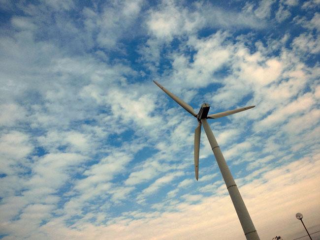 三浦霊園,周辺観光,宮川公園,風車