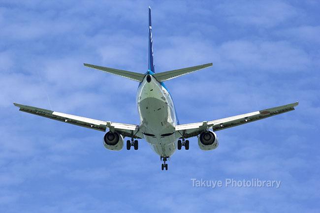 全日空 ボーイング 737-500型機 JA356K
