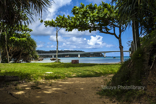 沖縄の風景写真 屋我地島 古宇利大橋