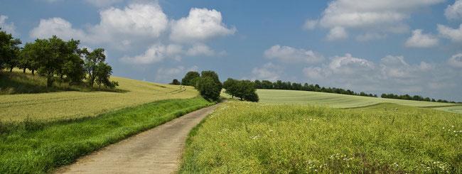 paysage de campagne pour blog agricole, création et animation site internet e-cime