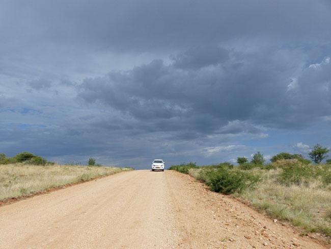 Auf dem Weg zurück von den Geparden. Ob wir heute Abend wieder Regen bekommen? Unser neuer Ford Ranger (34.000 km jung) hat sich bestens bewährt (toi toi toi).