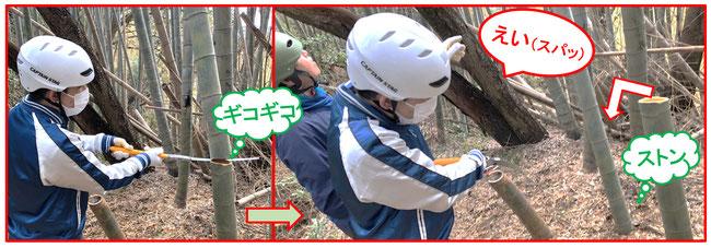 寛平さんのこぎりの腕が格段に向上しました。お見事!左はBambooKamakura主宰長谷川さん