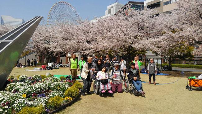 ワールドポーターズ前の花時計の隣にて記念撮影 先週の花冷えのおかげでまだまだ桜も満開でした!まさに春爛漫の風景ですね!