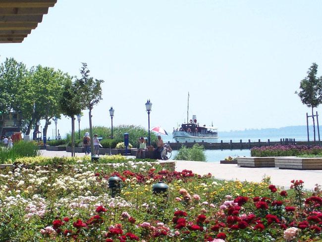 Вокруг озера проложены отличные пешеходные и велодорожки