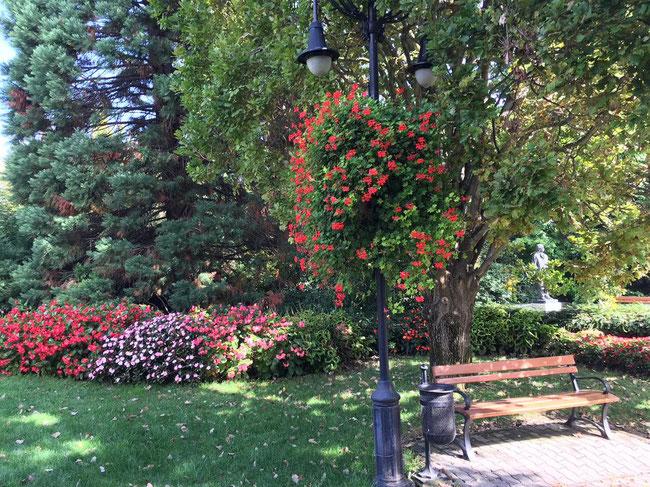 Осень - сентябрь в цветочном городке Хевиз