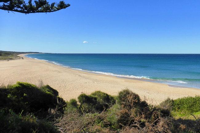 Coila Beach as seen from Tuross Head