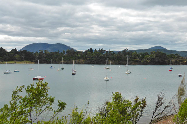 Cornelian Bay and its boats