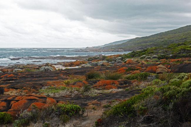 Indian Ocean coastal view