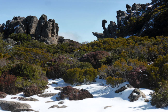 Rock formations, vegetation, and snow on the Mount Barrow plateau