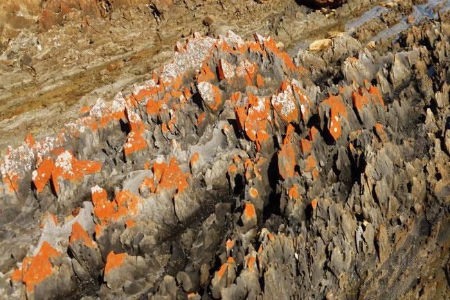 Rocks at Mary Ann Cove
