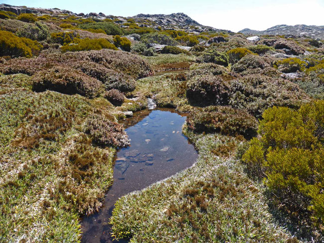 A small tarn on the alpine plateau