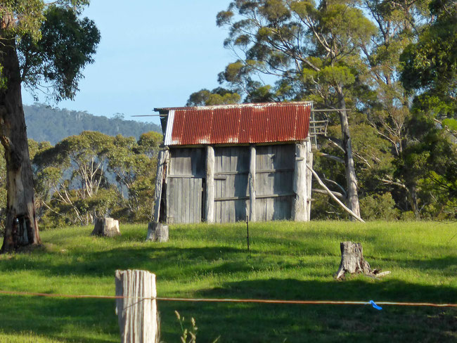 An Iconic Huon Valley shed