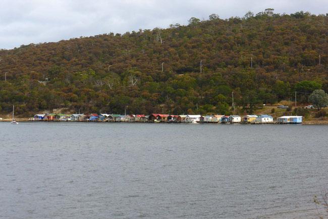 Boatsheds across the water