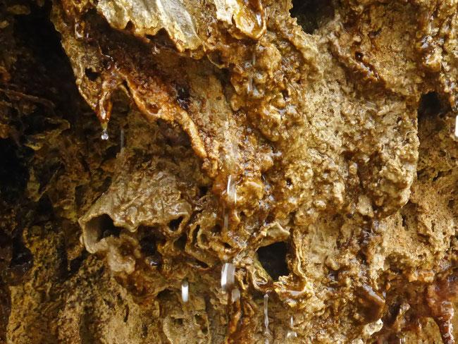 Dripping, lipped limestone orifices