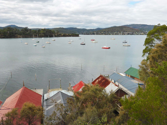 The boat shed roofs and Cornelian Bay
