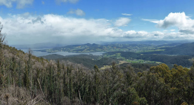 The view from Mount Cygnet