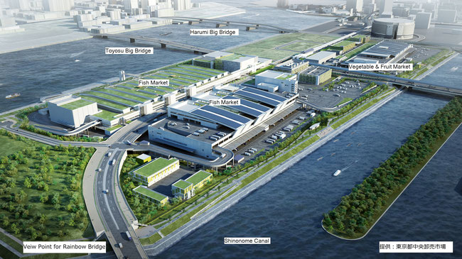 Bird's-eye view image of Toyosu Market